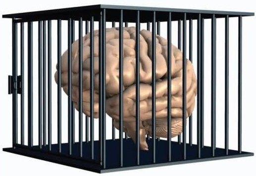 sistemas_de_controle_mente_cerebro1
