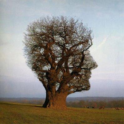 mente-humana-11