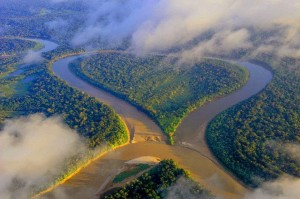 rios amazonia peixe